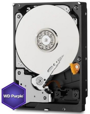 10TB 10000GB Western Digital WD Purple WD100PURZ Surveilance HDD SATA III 6.0Gb/s 256MB Cache